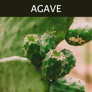 Agave Scented Products