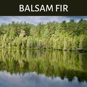 Balsam Fir Scented Products