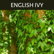 Load image into Gallery viewer, English Ivy Scented Products