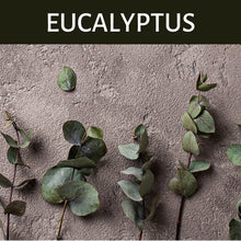 Load image into Gallery viewer, Eucalyptus Scented Products