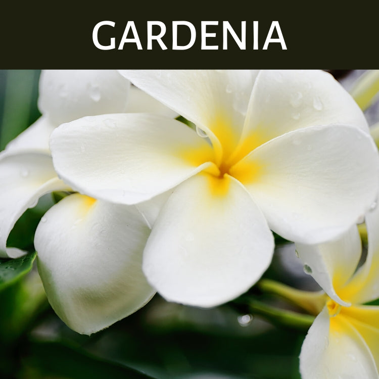 Gardenia Scented Products