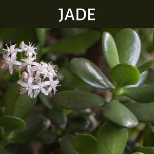 Jade Scented Products