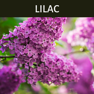 Lilac Scented Products