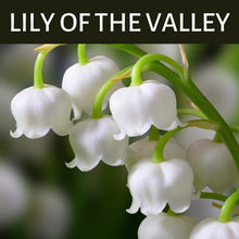 Load image into Gallery viewer, Lily of the Valley Scented Products