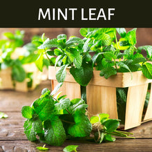 Load image into Gallery viewer, Mint Leaf Scented Products