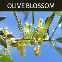 Load image into Gallery viewer, Olive Blossom Scented Products