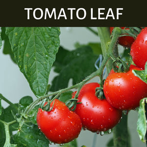 Tomato Leaf Scented Products