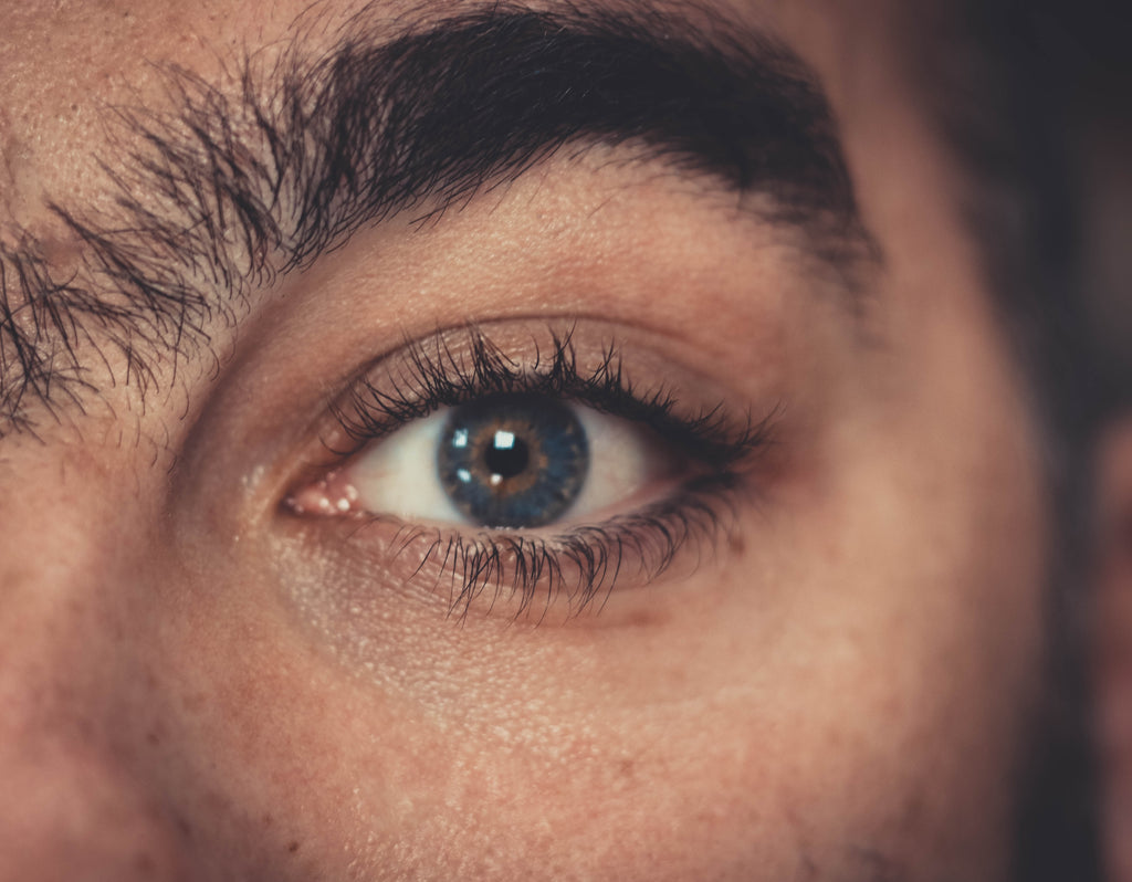 How Your Eyelashes Grow and Why Every Stage of Hair Growth Matters