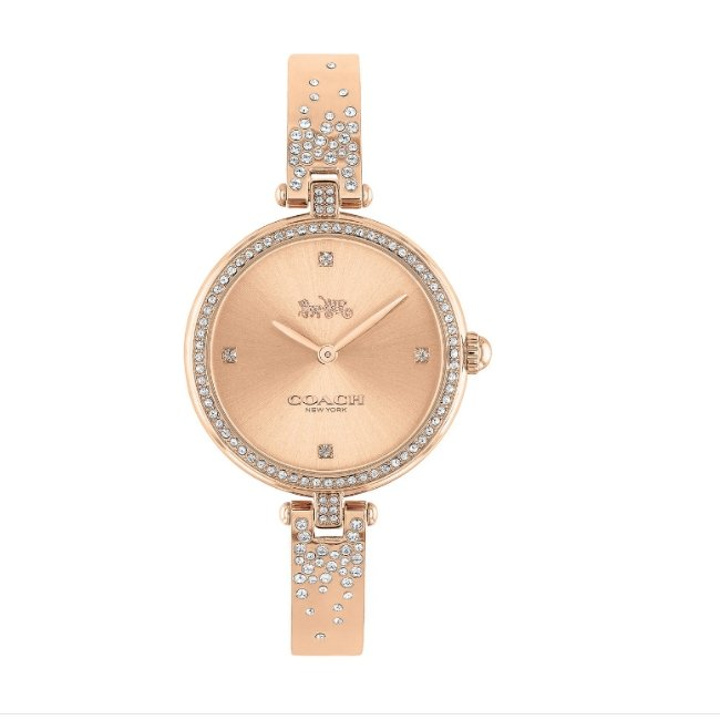 Coach Park Bracelet Watch -