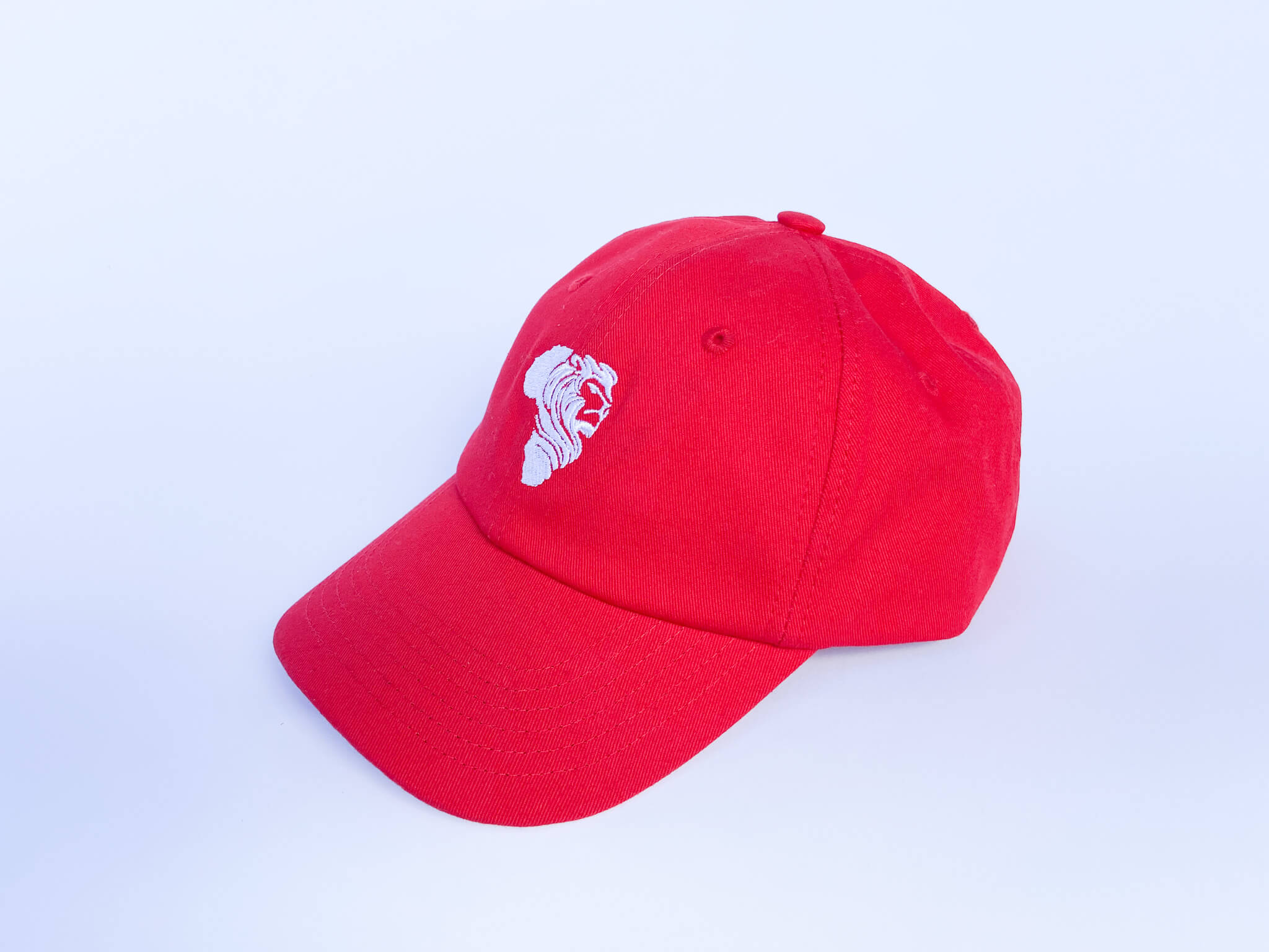 Red Relaxed AR Cap