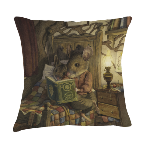 Bedtime Story Cushion