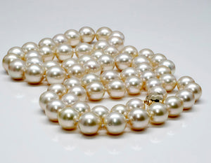 Opera Length Champagne Colored South Sea Cultured Pearl Strand