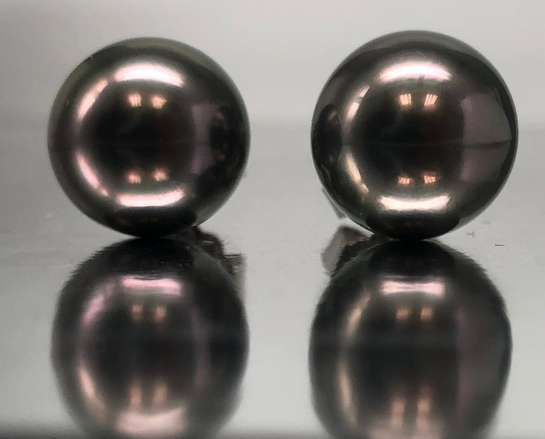 Gorgeous Black Tahitian South Sea Pearl Studs