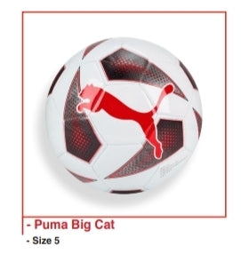 Soccer Ball - Puma Big Cat - Sz 5