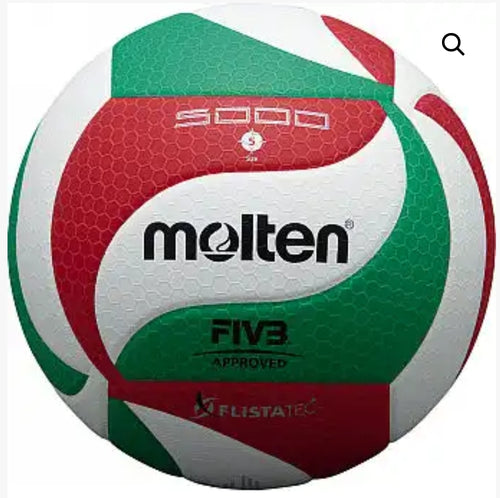 Volleyball Molten V5M5000 FIVB Approved Match - gr8sportskits