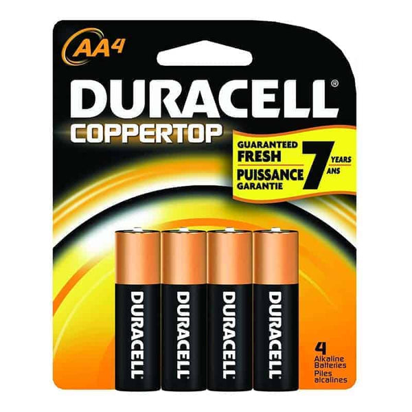 Alkaline Battery, Size AA