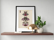 "Load image into Gallery viewer, ""Moth Sketchbook Cover + Wall Prints PRINTABLE DOWNLOAD"