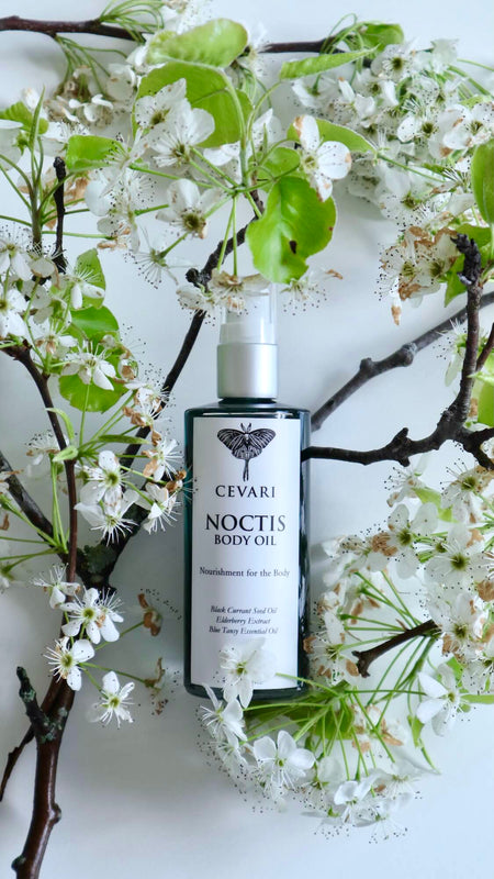 NOCTIS Body Oil with Flowering Tree Branch