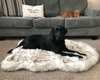 Pup Rug Faux Fur Orthopedic