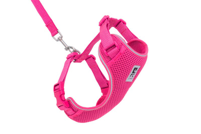 RC Pets Adventure Kitty Harness