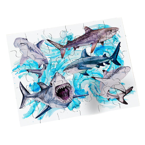 Shark Puzzles - Easy & Hard!