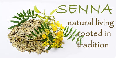 Senna: Natural living rooted in tradition