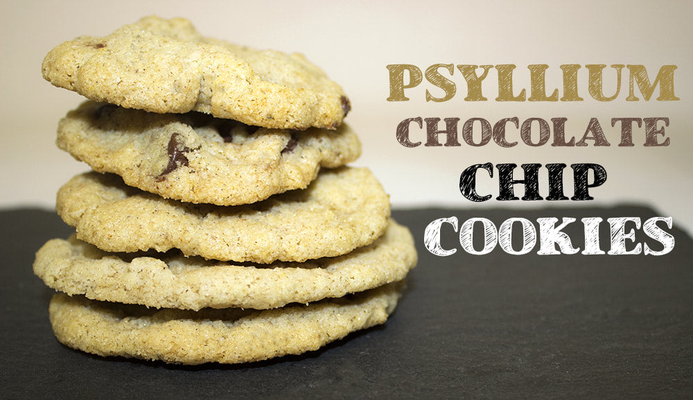 RECIPE: Psyllium Chocolate Chip Cookie