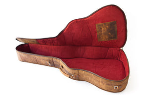 Arizona Arena Guitar Case