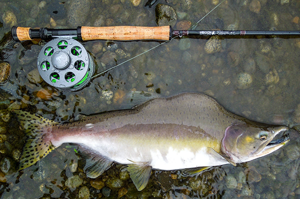 FALCON Fly Rod