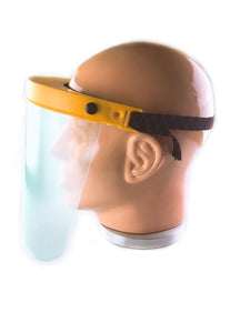 Visor shield