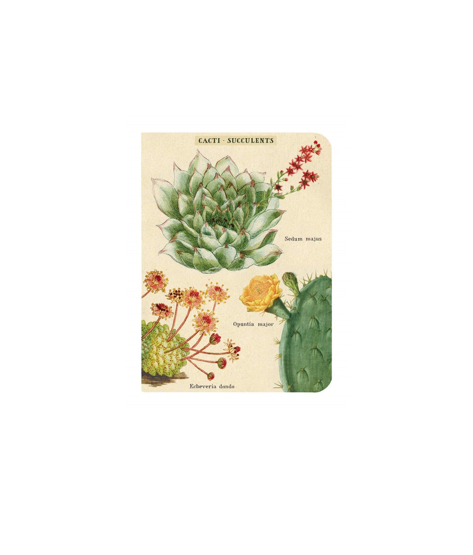 Cavallini & Co. Succulents Notebooks Set of 3 - Mini