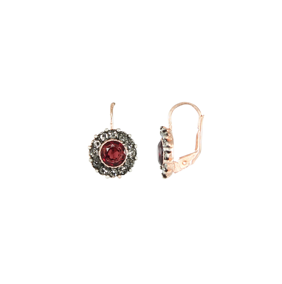 Simply Italian Garnet & Crystal Circle Drop Earrings