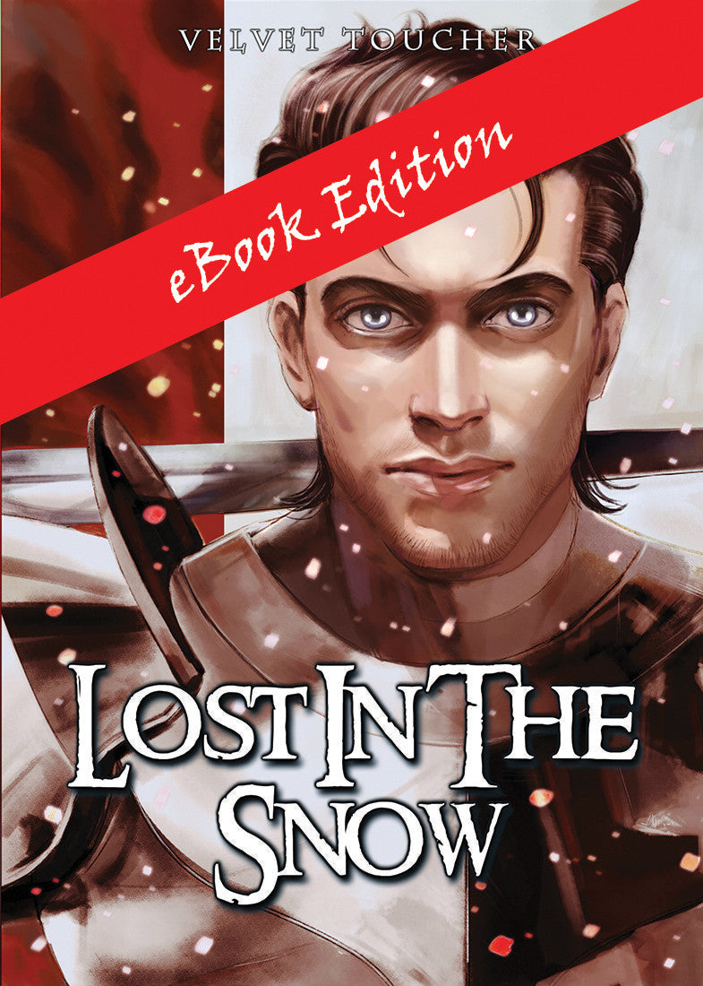 eBook - Lost in the Snow by Velvet Toucher