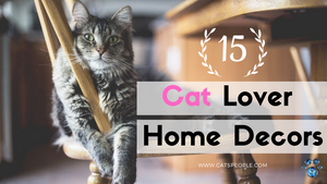10 Home Decorations for Cat Lovers