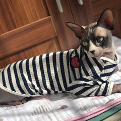 sphynx cat sweater to keep warm