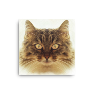 Cat Portrait Canvas