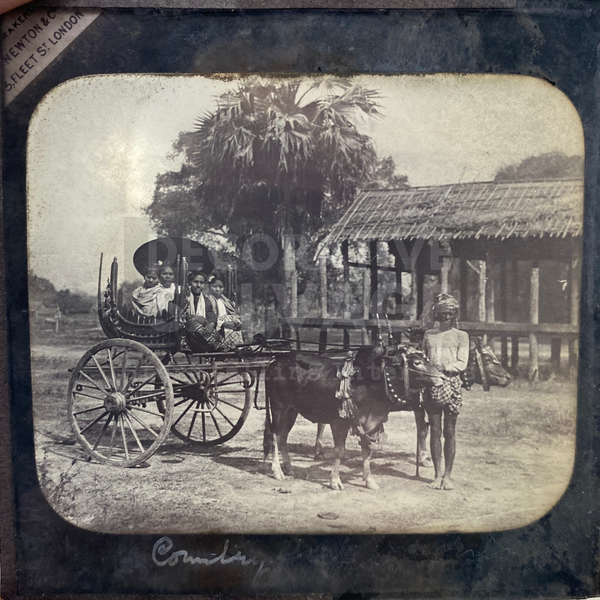 Lantern Slide | Country Cart, Burma (ca 1890s)