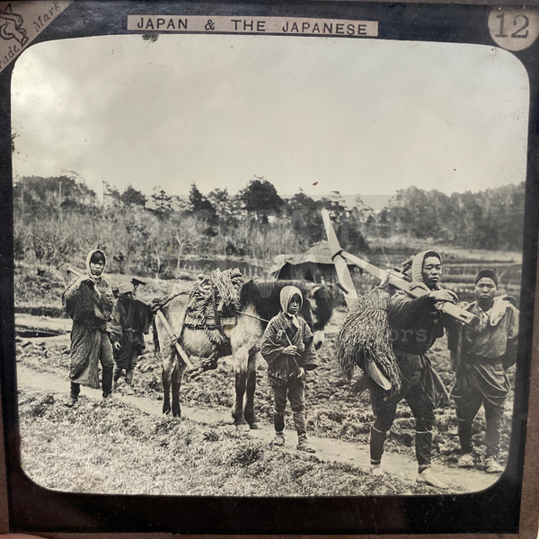 Lantern Slide | Farmers Going To Work, Japan (1890s)