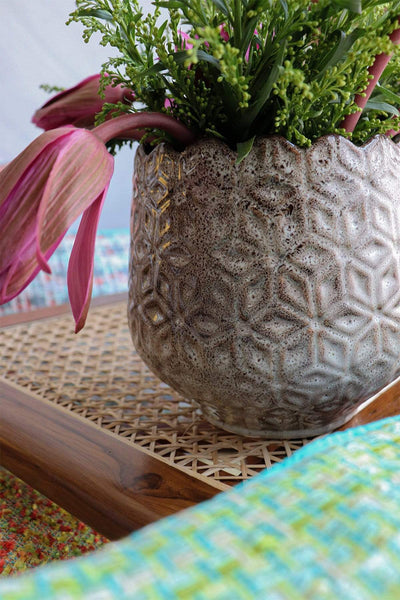 Buy Cutting Pineapple Desk Planter (Off White) Online | Freedomtree.in