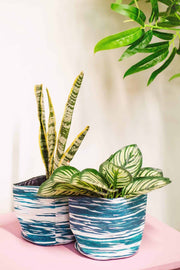 Stripey Canvas Planter (Teal/White)