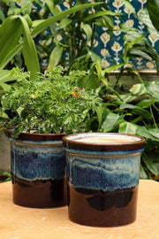 Buy Studio Line Black/Blue Herb Planter With Tray (Set Of 2) Online | Freedomtree.in
