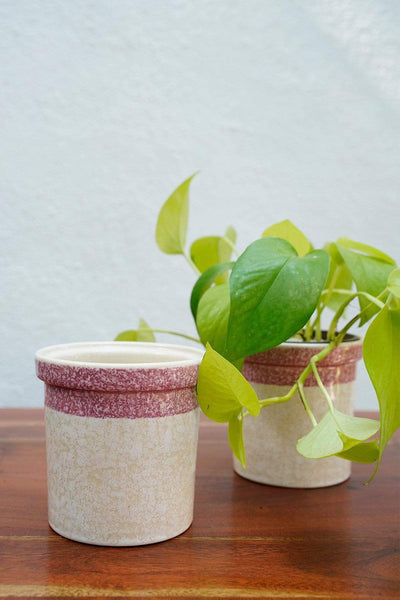 Buy Studio Line Herb White/Pink Jar Planter (Set Of 2) Online | Freedomtree.in
