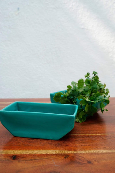 Buy Studio Line Square Square Planter (Deep Green) Online | Freedomtree.in