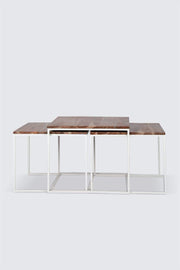 A Set Of 3 Wood & Metal Coffee Table In Natural Shade And Three Surface Nested Design