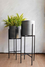 Buy Umbra Silver Metal Planter (Set Of 2) Online | Freedomtree.in