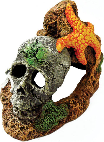 Blue Ribbon Pet Products - Exotic Environments Skull With Starfish