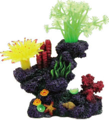 Poppy Pet - Coral Reef Formation