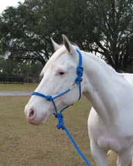 Hamilton Halter Company - Adult Horse Rope Halter With Lead