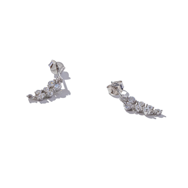 Sterling Silver On the Grapevine Earrings