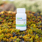 Collagen repair for natural anti-aging